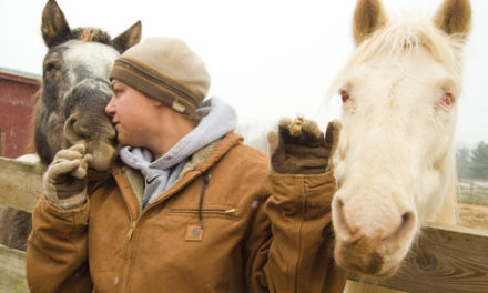 Home, Home at Last Carroll County's Blind Horse Refuge