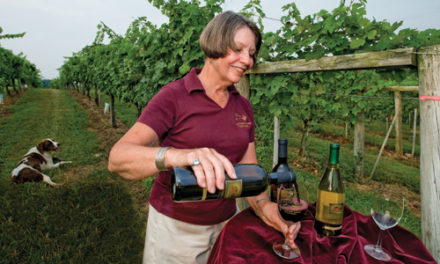 A Layman's Guide to the Wine Festival