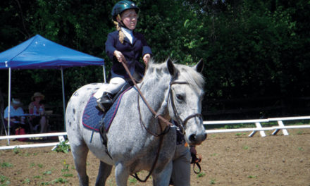 Merging Horseback Riding And Special Education