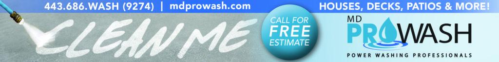 ProWash_Web_Ad