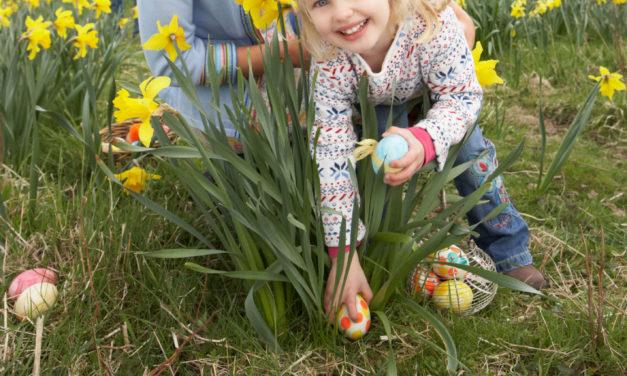 Westminster Easter Egg Hunts