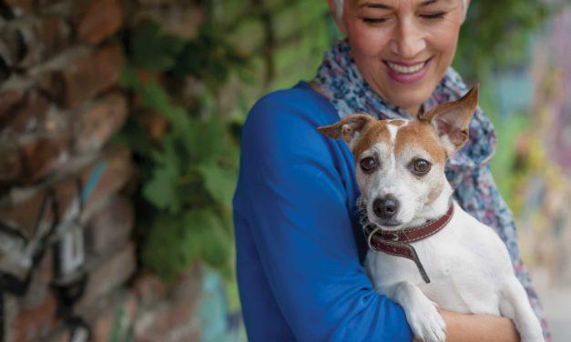 Succession Plan For Pets