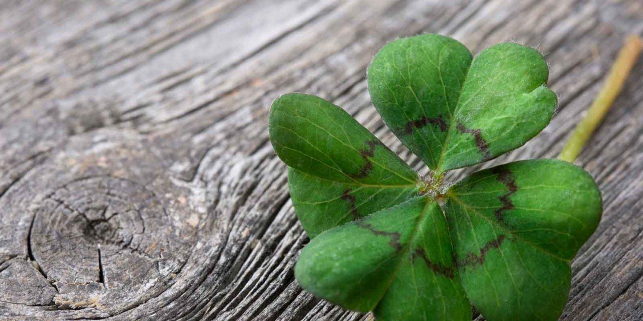 Carroll's Irish Roots