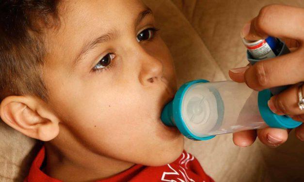 Food Fight: Understanding Children's Food Allergies